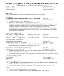 Objective Section In Resume Objective Of Resume For Marketing Career In Fresh Graduate Section 14