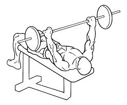 Wide Grip Decline Bench Press  Add This Chest Exercise To Your Decline Barbell Bench