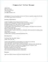 Good Summary For Resume Awesome Examples Of Summary In Resume Summary Of Resume Examples Summary On