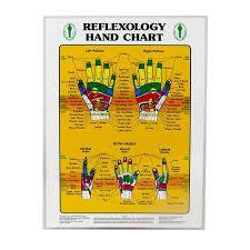 Foot Hand Reflexology Chart