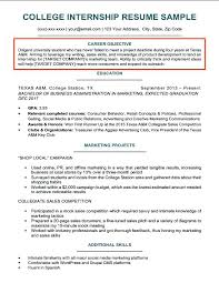 Sales Representative Resume Examples Delectable Resume Examples Of Objectives Yomm