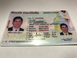 Carolina Fake – South Old Sides Iron Sc new