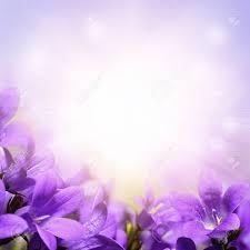 Purple Flowers Backgrounds Purple Flower Background Design Magdalene Project Org