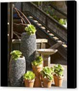 duvet the garden gallery morro bay california canvas print