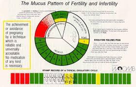 Natural Family Planning Mucus Chart Ovulation Calendar Temperature Chart Calendars Office Of