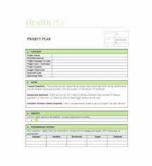 project charter template of software excel