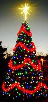 Christmas Tree Garden Ridge