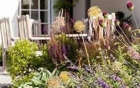 Small Picture Garden Design Surrey RHS Award Winning Designer Raine Garden