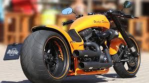 harley davidson motorbike motorcycle