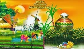 Image result for பொங்கல் புத்தாண்டு வாழ்த்துக்கள்