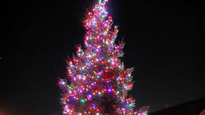 Babylon Christmas Tree Lighting Towns Schedule Christmas Tree Collection Days Newsday