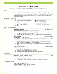 Inspirational Net Developer Resume Sample Resume Design