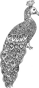 Small Picture Advanced Animal Coloring Pages Nice Advanced Animal Coloring Pages