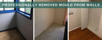 remove mould permanently from walls