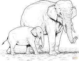 Small Picture Indian Elephant Baby and Mother coloring page Free Printable