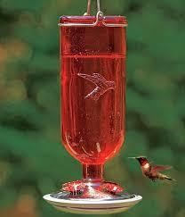 bottle hummingbird feeders bottle style hummingbird feeders for attracting hummingbirds at bird garden