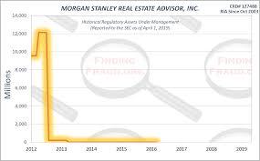 Morgan Stanley Real Estate Advisor Inc Finding Fraud