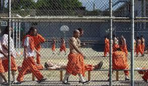 prison reform essay americas mass incarceration problem how to fix americas mass incarceration problem how to fix our criminal