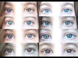 Color Contacts All 12 Freshlooks Color Contact Lenses