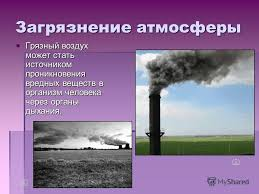 Влияние состояния окружающей среды на здоровье человека реферат  влияние состояния окружающей среды на здоровье человека реферат