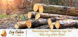 uses for logs harvesting lumber and preparing logs for your log cabin home logs  for sale . uses for logs ...
