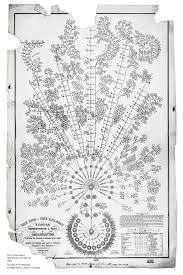 The First Org Chart Ever Made Is A Masterpiece Of Data