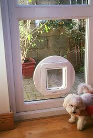 dog flaps fitted in double glazing give your dog the freedom they need and when fitted correctly blend neatly into the window or door frame of your home
