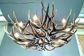 full size of reion whitetail antler chandelier white uk lamp faux home improvement remarkable c marvelous