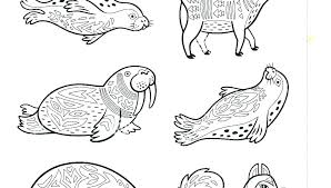 Coloring Pages Free Animal Coloring Page Animals Pages Printable