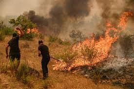 اندلاع 58 من حرائق الغابات في تركيا بعضها في نطاق وجهات سياحية حيوية - CNN  Arabic