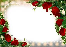 Frames For Photoshop Flower Frame For Photoshop Flame Of Love Free Photo