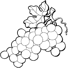 grapes clipart black and white. pin grape clipart black and white #6 grapes t