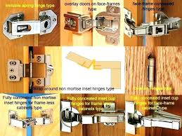 face frame cabinet hinges door types inset concealed partial doo
