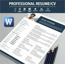 Professional Cv Template Word Download Resume Word Document Download Flexible Page Design Professional