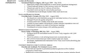what should a good resume look like free resume templates example of a great good cv title examples good