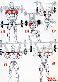 Check This Effective Workout Program Like And Share