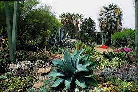 california gardening 2 17 best images about california garden on