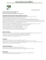 Film Producer Sample Resume Extraordinary Art Producer Sample Resume Colbroco