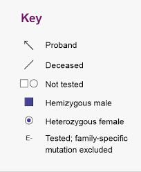 Pedigree Chart Key Fabry Disease Pedigree Analysis Fabry Awareness