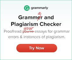 Essay Experts Should Be Your Custom Essay Company  annotated     apa format essay example paper comhow to write an essay in apa Carpinteria  Rural Friedrich Purdue