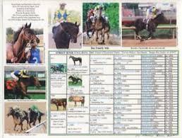 Details About Race Horse Street Sense Kentucky Derby Picture Pedigree Chart Calvin Borel