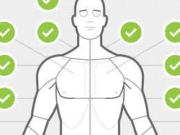 Body Chart Anterior By Chris Wharton On Dribbble