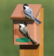Birdhouse Duncraftcom Eco Chickadee Bird House