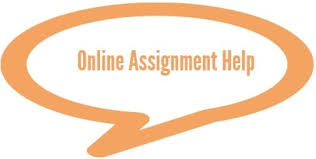 top online assignment help services