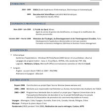 cv template word francais sample cv resume template via format curriculumvitae examples cv