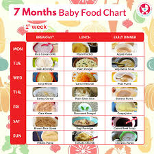 7 Month Baby Diet Chart Food Chart For 7 Months Baby Www Bedowntowndaytona Com
