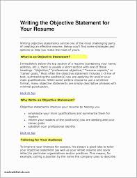 Great Resume Objective Examples 29 New Resume Objective Example