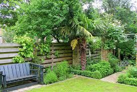 small garden design ginkgo gardens