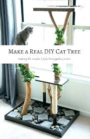cat tree ideas trees best homemade on toys outdoor run