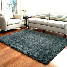 elegant area rugs and at full best of costco indoor outdoor or by